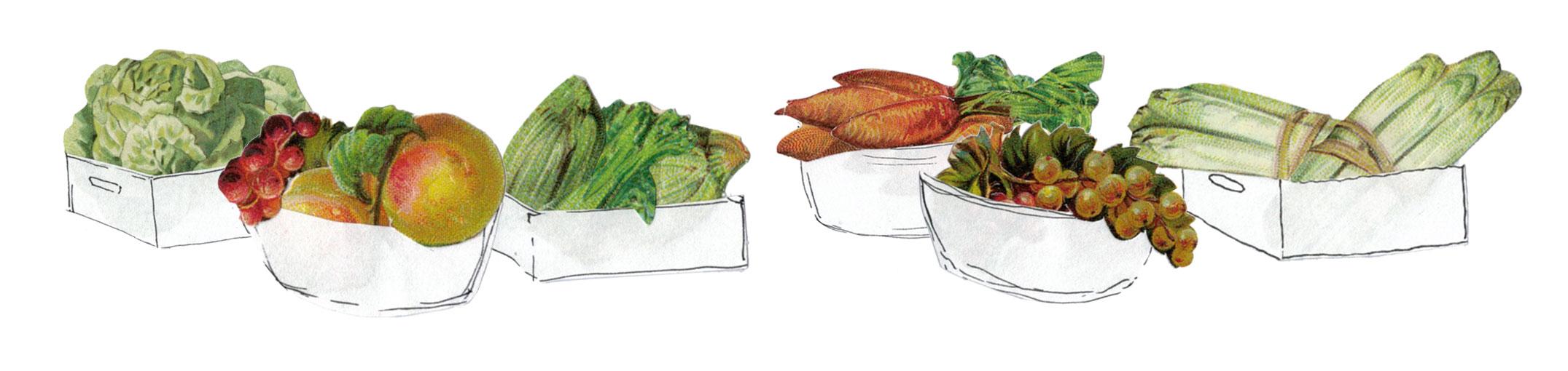 Bio Gemüse & Früchte